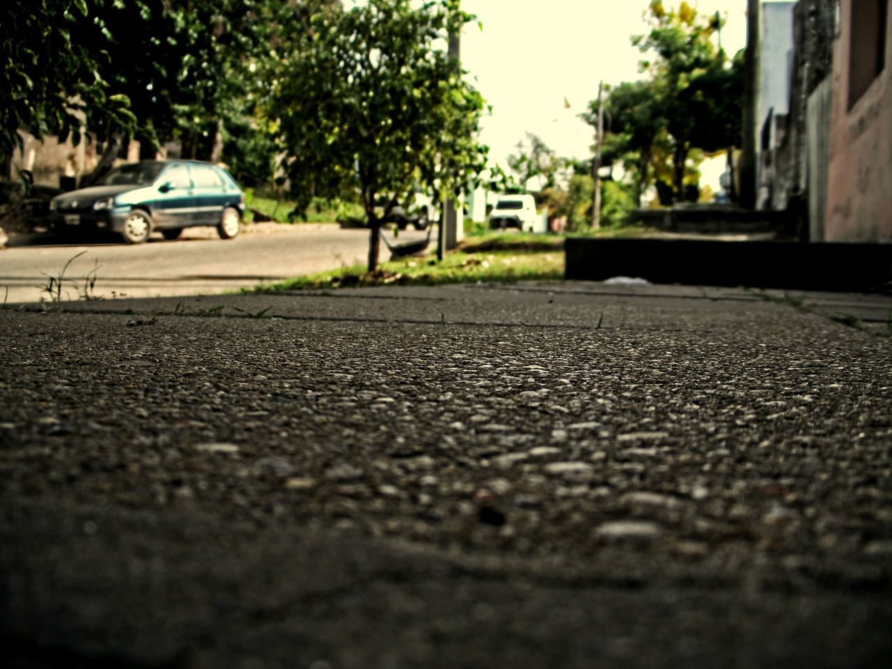 #home #sweet #home #street Asphalt City City Life Day Outdoors Selective Focus Street The Way Forward Tree First Eyeem Photo