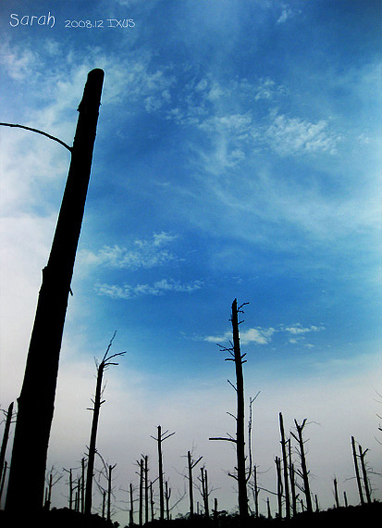 Buan Blue Sky Sky Winter Sky Colorful Natural Trees Photography Nature Sky Photo Buan Korea