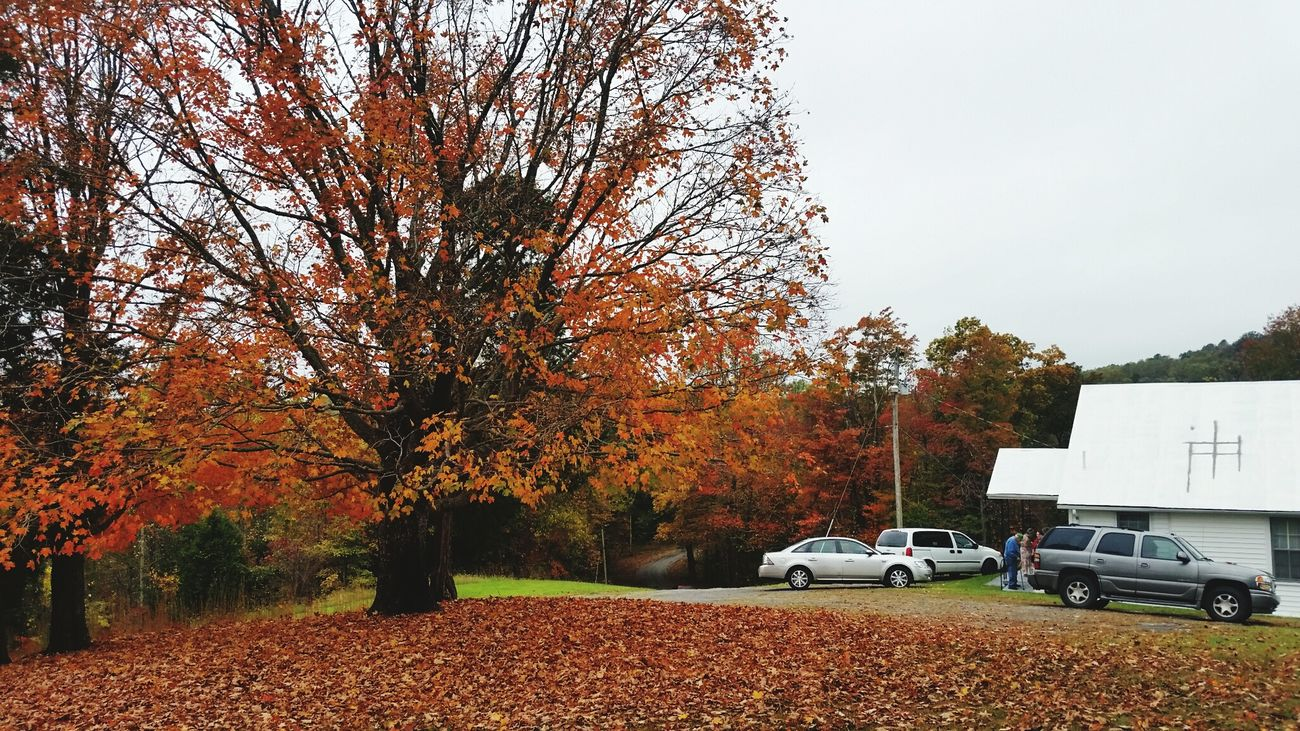 Sunday Morning Church Little Country Church Sugar Tree Knob Church Of Christ Childhood Memories Fall Beauty Fall Colors Fall Leaves Leaves