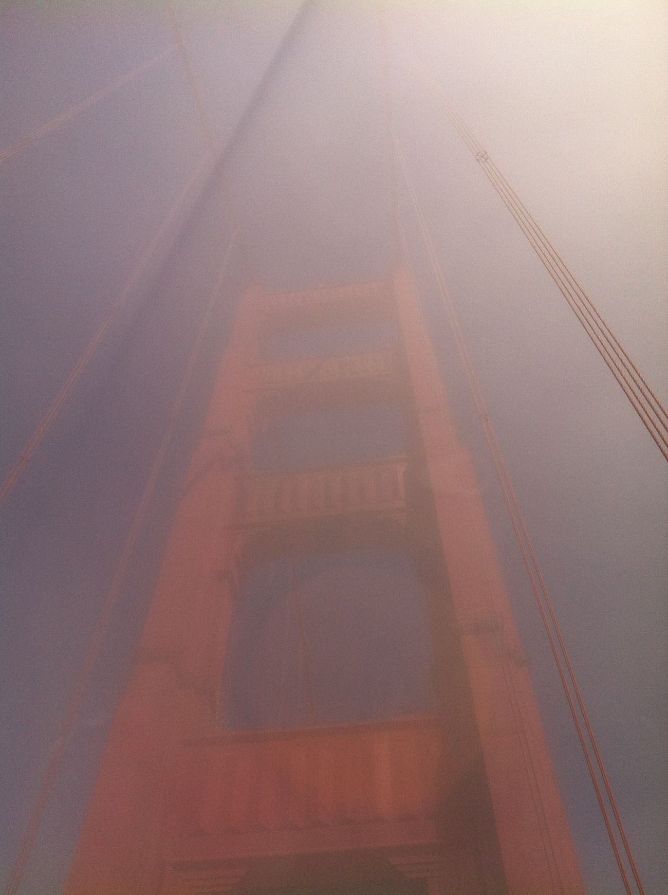 International Orange Lookingup The Purist (no Edit, No Filter)