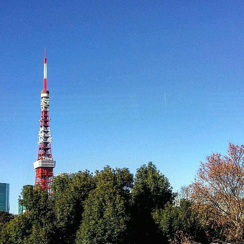 Tokyo Tower 333 M Taller Than The Eiffel TowerJapanarchitecture Tokyoarchitecture Architecture Tokyo Tokyo Winter Tokyo,Japan