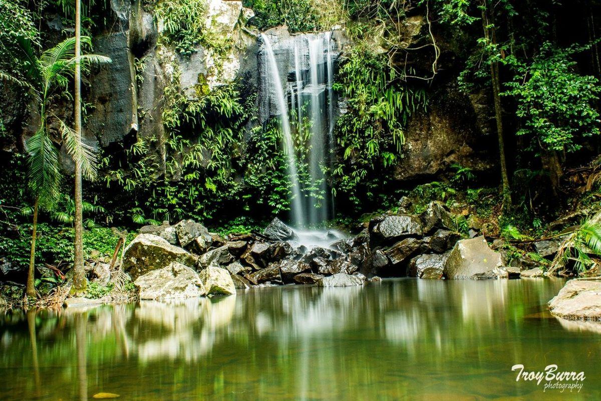 Curtis creek falls Eyem Best Shots Water_collection EyeEm Nature Lover Taking Photos