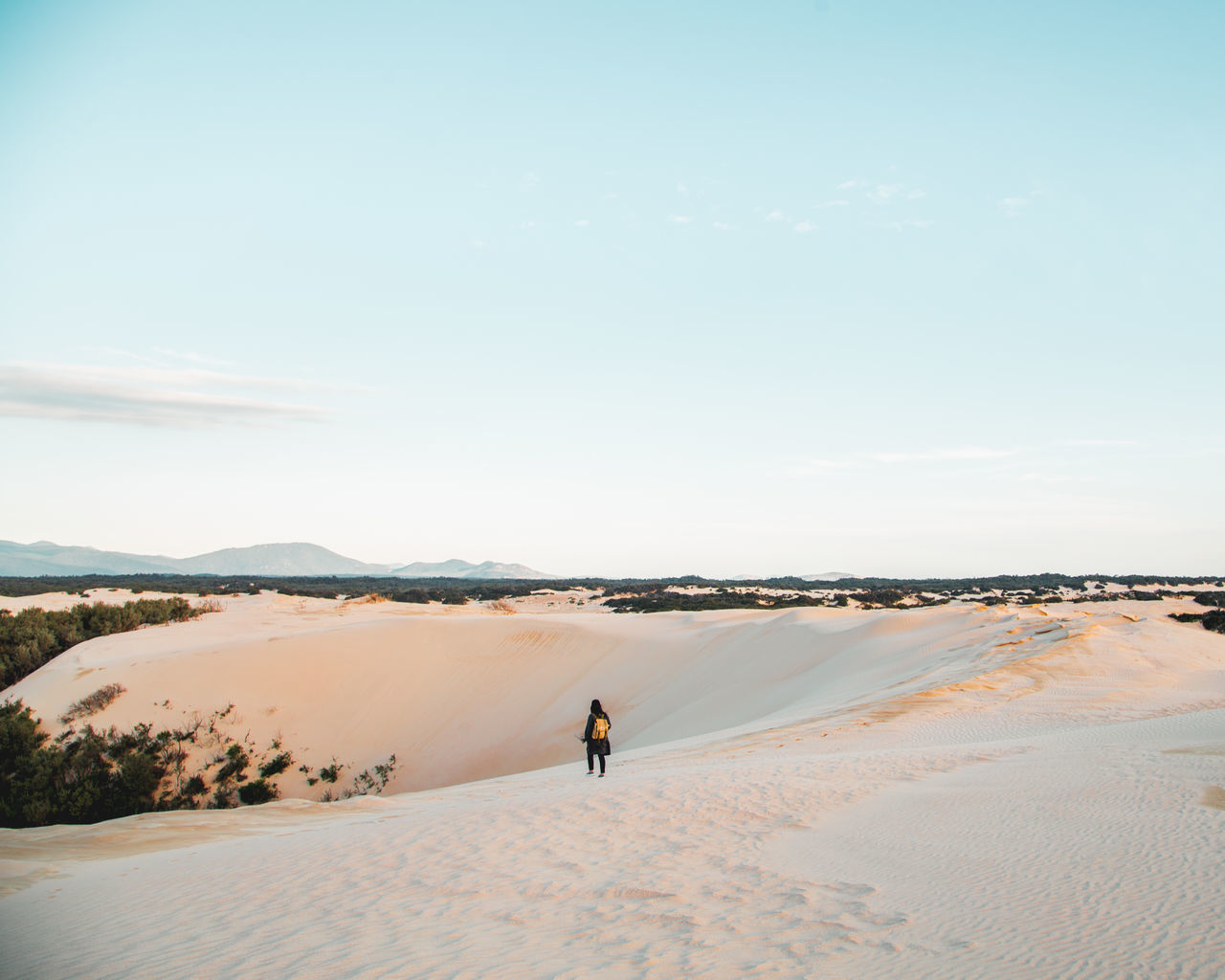 Keep it wild Sand Desert Sky Clear Sky Nature One Person Beauty In Nature Landscape Outdoors The Great Outdoors - 2017 EyeEm Awards Dreamlike Blue Australia The Big Drift Wilsons Promontory Tinypeopleinbigplaces Silhouette Silhouette_collection Tiny People Travel Travel Destinations Travel Photography