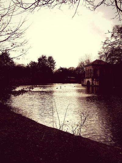 Winter Park Winter Park Birkenhead Birkenhead Park Birkenheadpark Sepia Lake Geese Water Cold Boat House Recreation  Trees Moody