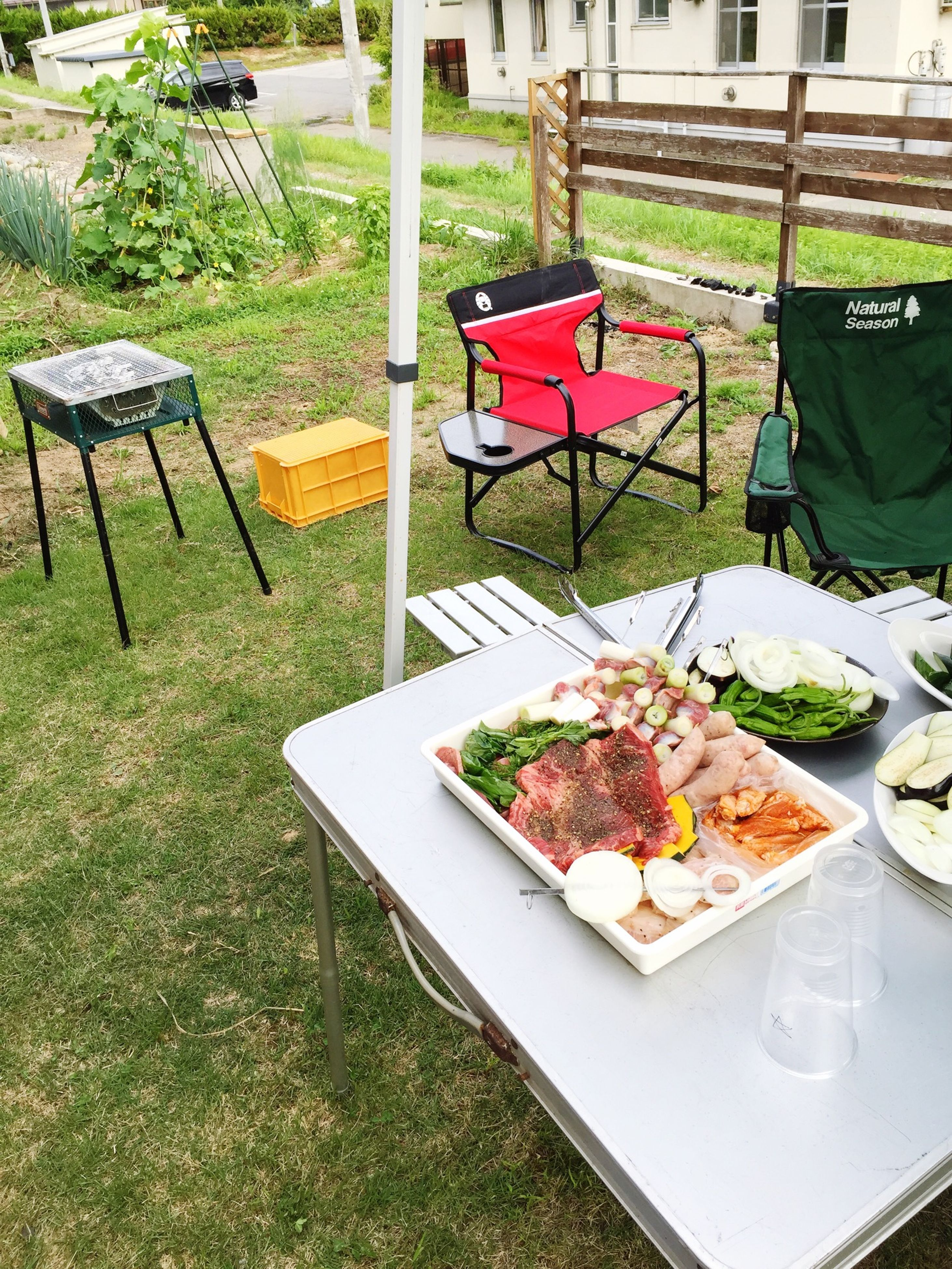 food and drink, food, freshness, grass, vegetable, healthy eating, chair, table, bench, day, absence, outdoors, no people, high angle view, ready-to-eat, leaf, green color, variation, nature, abundance