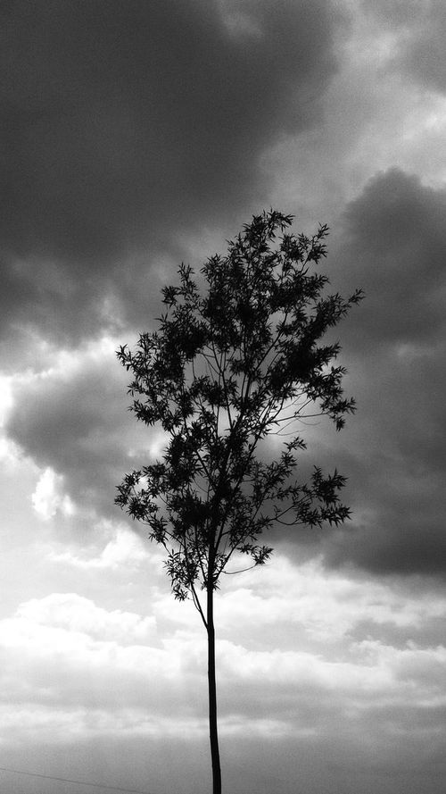 Clouds And Sky Blackandwhite EyeEm Nature Lover Silhouette
