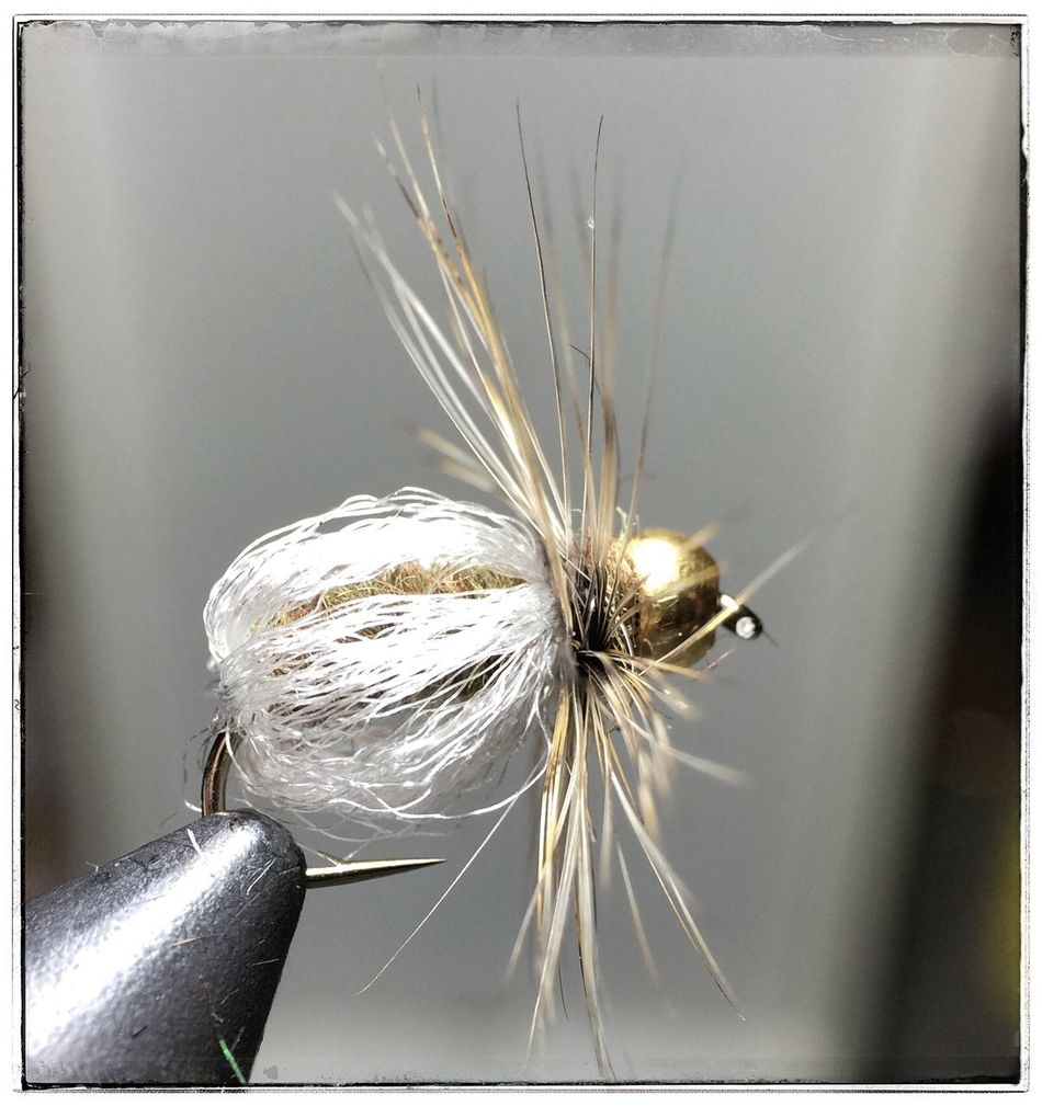 Gary Lafontaine Fly Pattern Zelon Sparkle Bed Pupa Tiemco