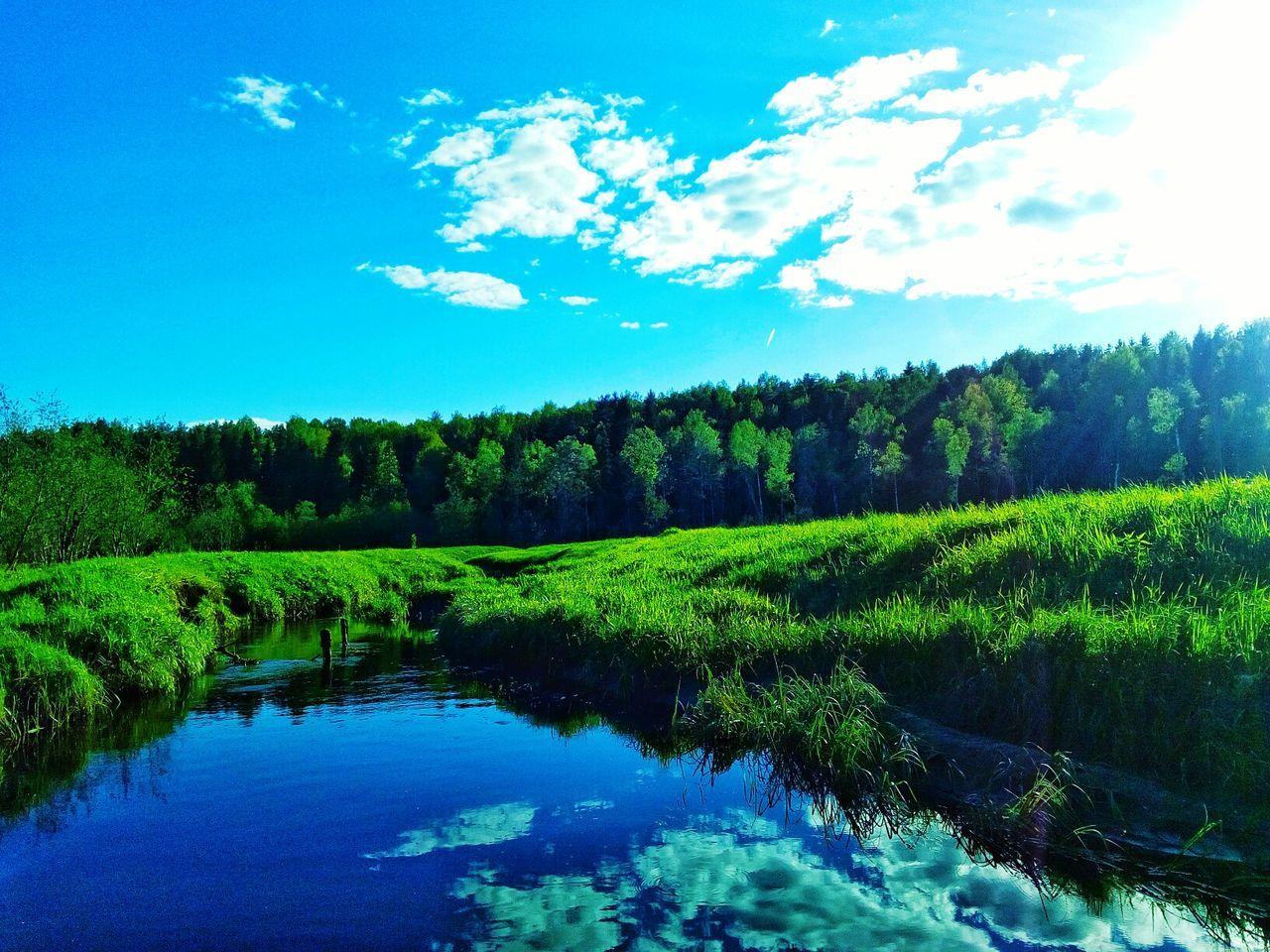лес и природа речка небо⛅️ First Eyeem Photo