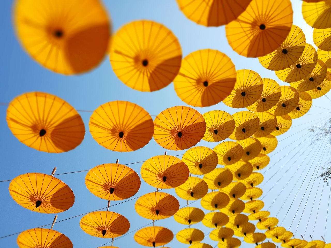 Yellow orange umbrellas hanging from low angle Multi Colored Low Angle View Objects Decoration Orange Red Architecture Day Sky Outdoors Backgrounds No People Hanging Yellow