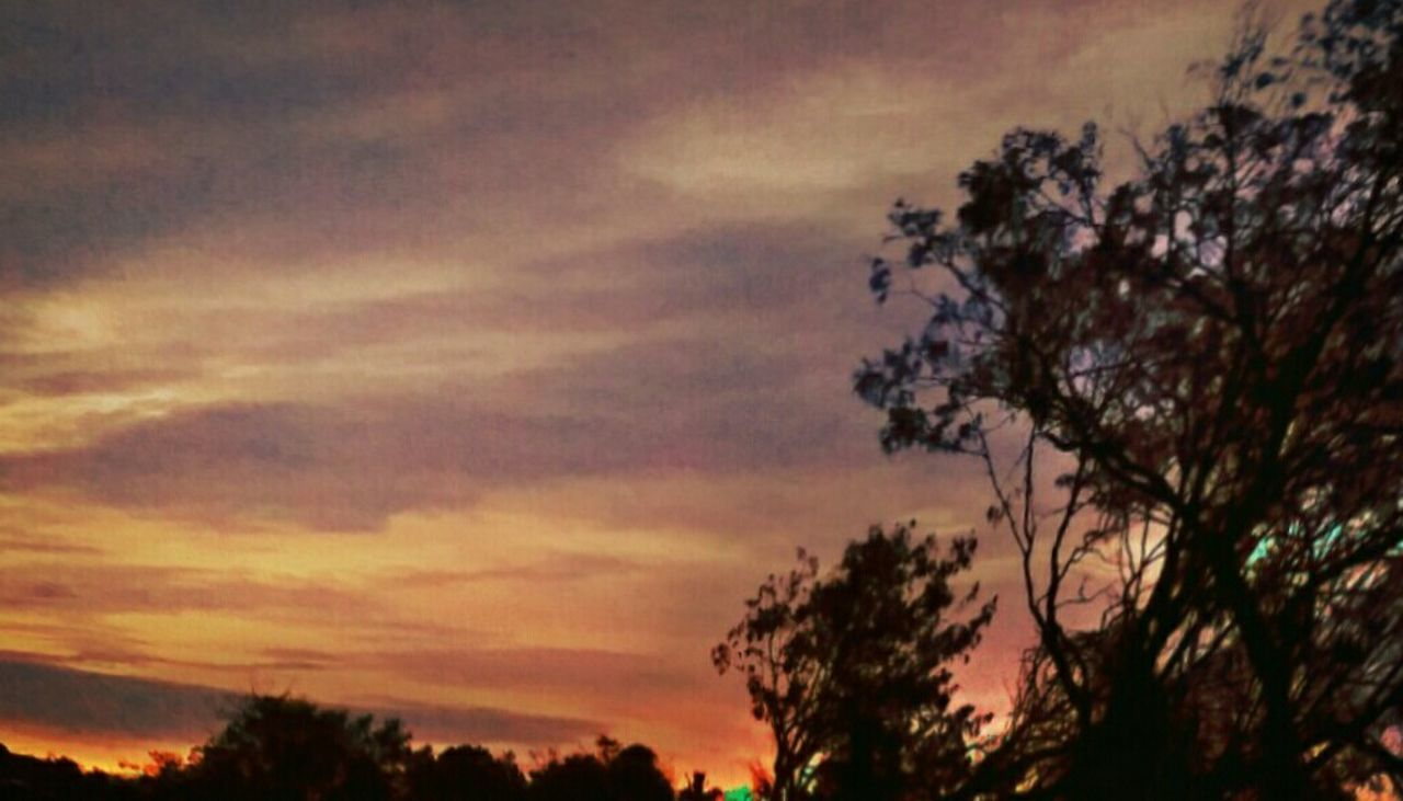 Dusk Sky Dusk Sunset Tree And Sky Tree At Dusk Sunset Scenes Sky And Clouds Clouds Sunset Clouds