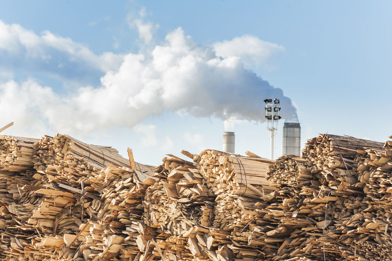 Log and wood piles in industrial furniture factory. Built Structure Chimney Cloud - Sky Factory Industry Industry Lumix Outdoors Saw Sky Smoke Smokestack Storage Timber Trunk Wood