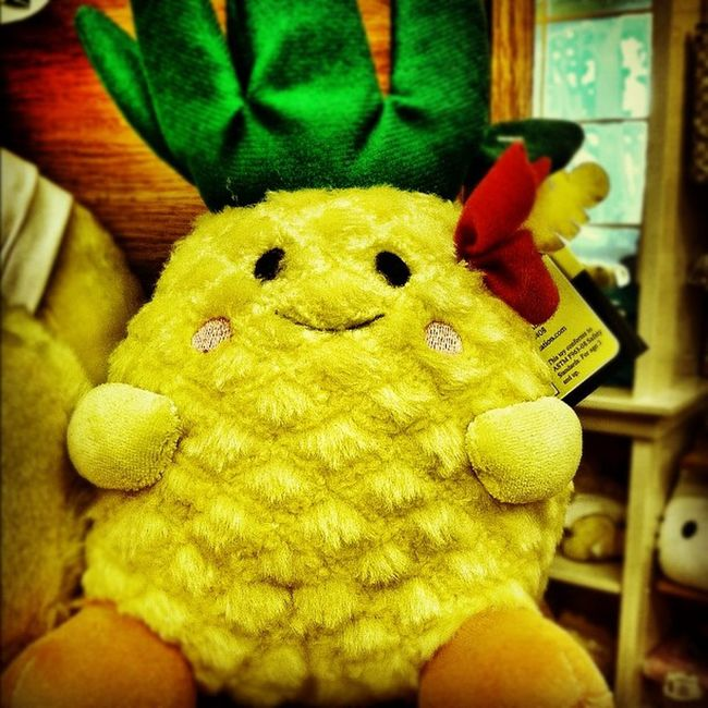 #plushtoy #stuffedtoy #pineapple #instagram #iphoneographyhi #iphoneography #doleplantation IPhoneography Instagram Pineapple Iphoneographyhi Doleplantation Plushtoy Stuffedtoy