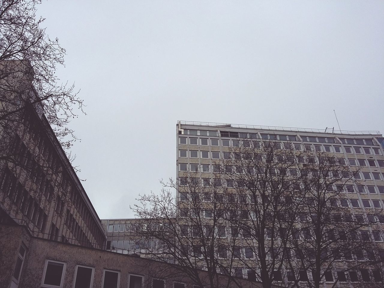 Winter Tristesse. · Hamburg germany 040 From the archives Architecture buildings corners Naked Trees tree crowns Gray Sky melancholy