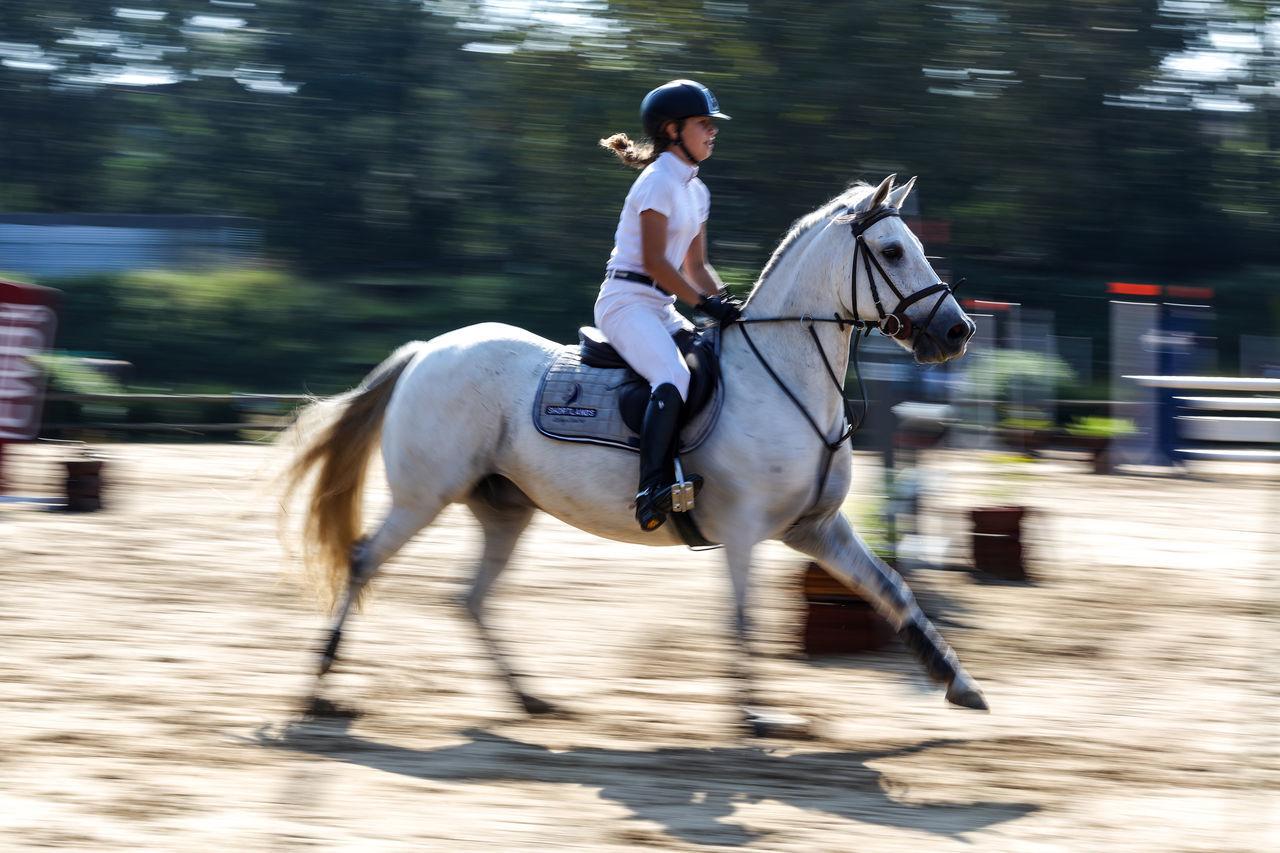 Horse riding Action Grey Horse Horse Riding Motion Blur Motion Photography Motionphotography Move Movement Movement Photography Rider