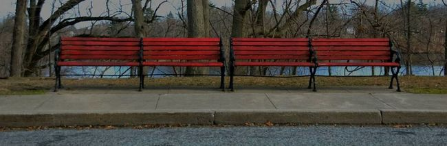 This is at Roger Williams Park. I just love that the benches weren't green.Also I really like a darker photography than a lighter one.