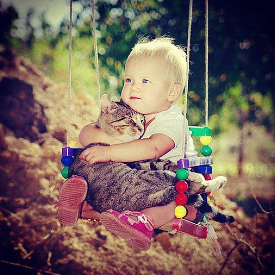 Daily dose of adorable! Socute Heartmelted Babies Pets cats