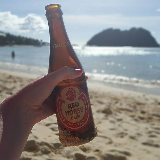 Best thing about Thephillipines ? Redhorsebeer Redhorse Beer Extrastrong Madeforbeachdays Cheap Tasty Beerporn