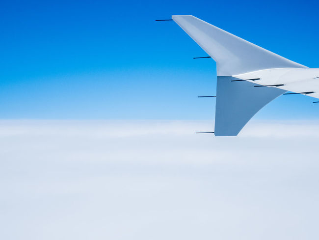 Clouds Like Cotton Shapes Traveling Winglet Above The Clouds Abstract Air Vehicle Aircraft Aircraft Wing Airplane Airplane Wing Aviation Blue Blue And White Blue Sky Clear Clouds Flying Highkey Journey No People Sky Sterile Transportation White