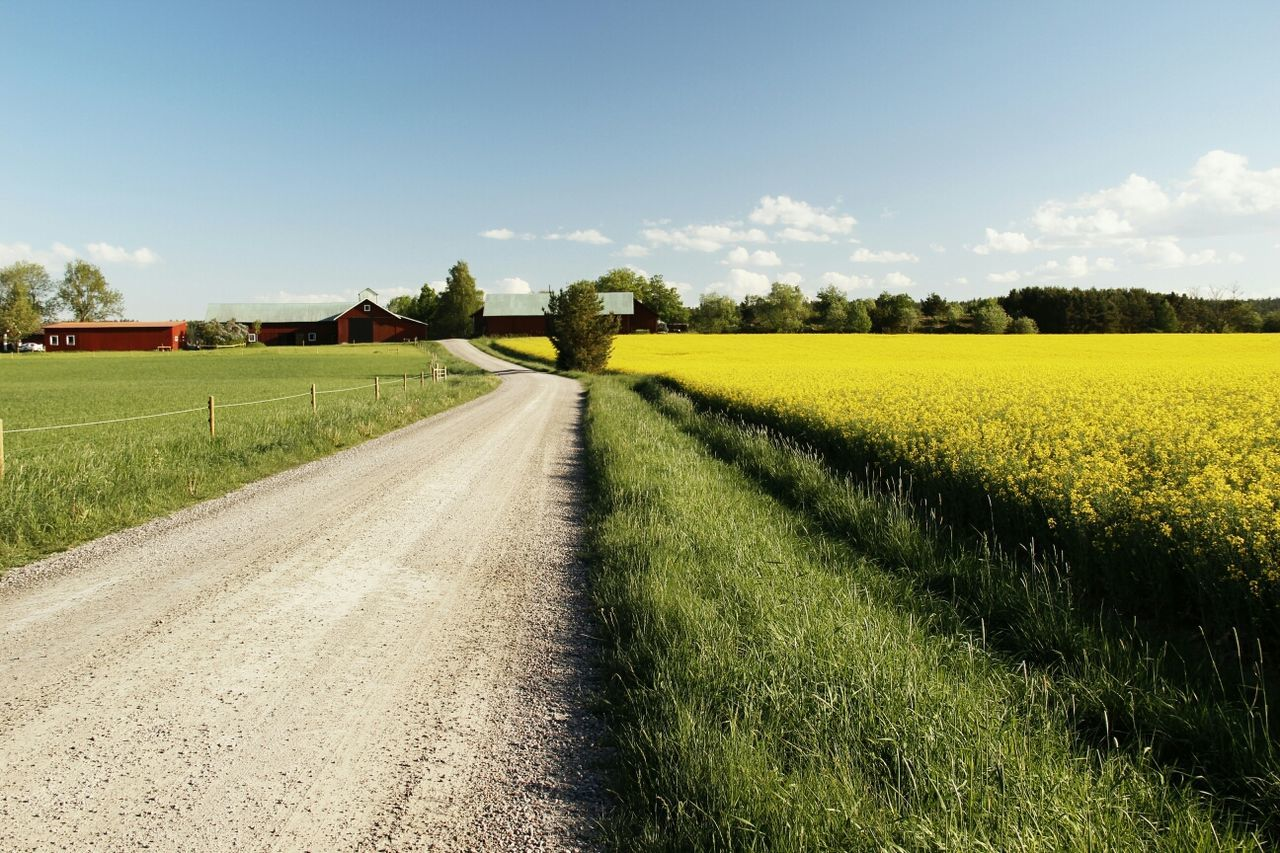 Beautiful stock photos of farm, Agriculture, Beauty In Nature, Country Road, Day