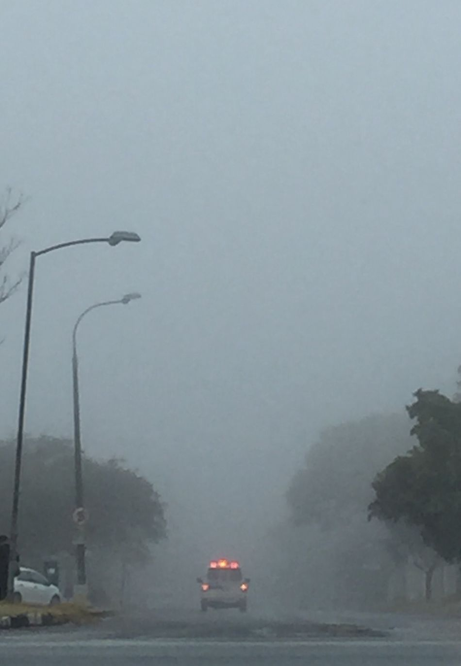 Feel The Journey Mist Midday Ambulance Red Lights Accident? Wet Road Wintertime Street Lamps