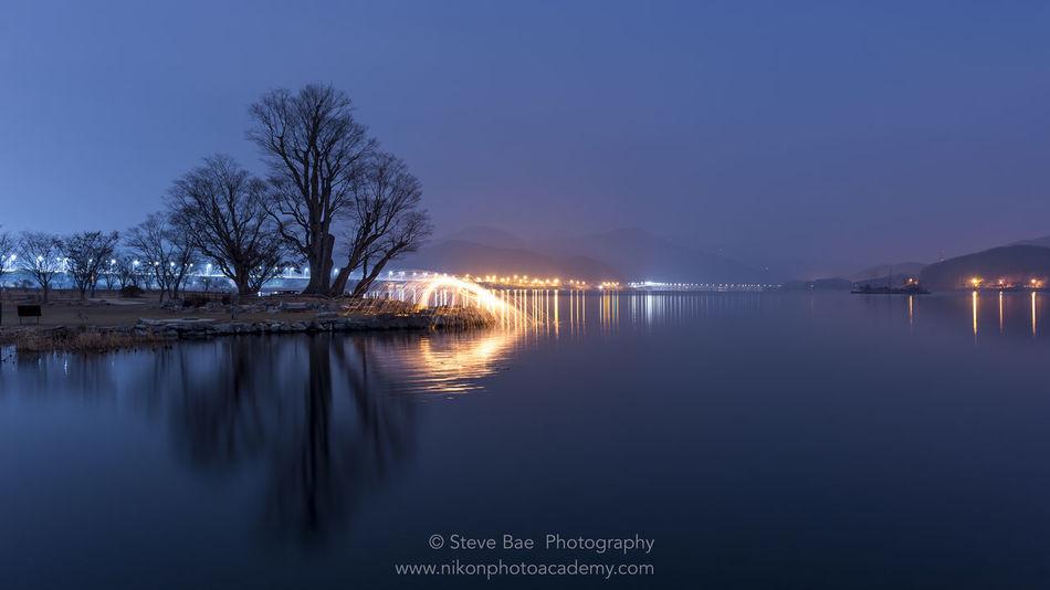 Beauty In Nature Garden, Lake Night Nightphotography No People Reflection Tree Water