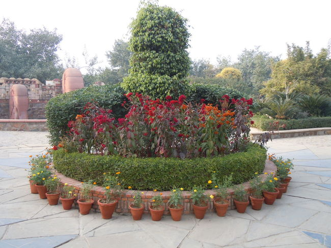 00669 Garden of Five Senses, New Delhi Beauty In Nature Botany Day Decoration Flower Footpath Formal Garden Freshness Garden Garden Path Growing Growth Hedge In Front Of Multi Colored Nature Outdoors Park - Man Made Space Plant Potted Plant Springtime Topiary Tranquil Scene Tranquility Water