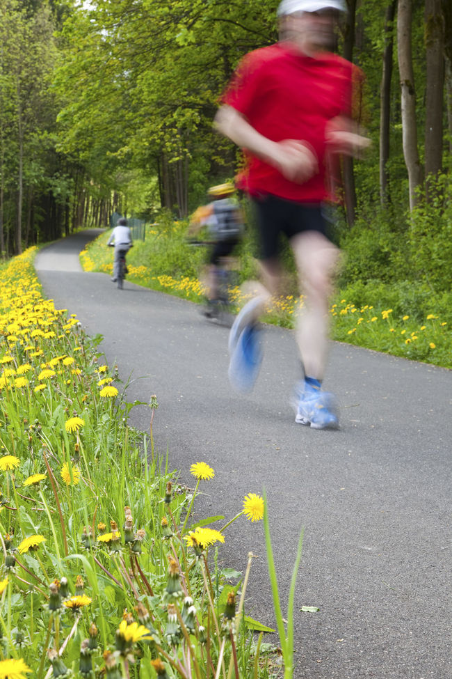 Runner in the country Park Action Adult Adult Athlete Blurred Motion Day Fitness Jogging Man Marathon Motion Nature Outdoors People Person Relaxation Running Time Senior Speed Speeding Sport Training Tree Vertical