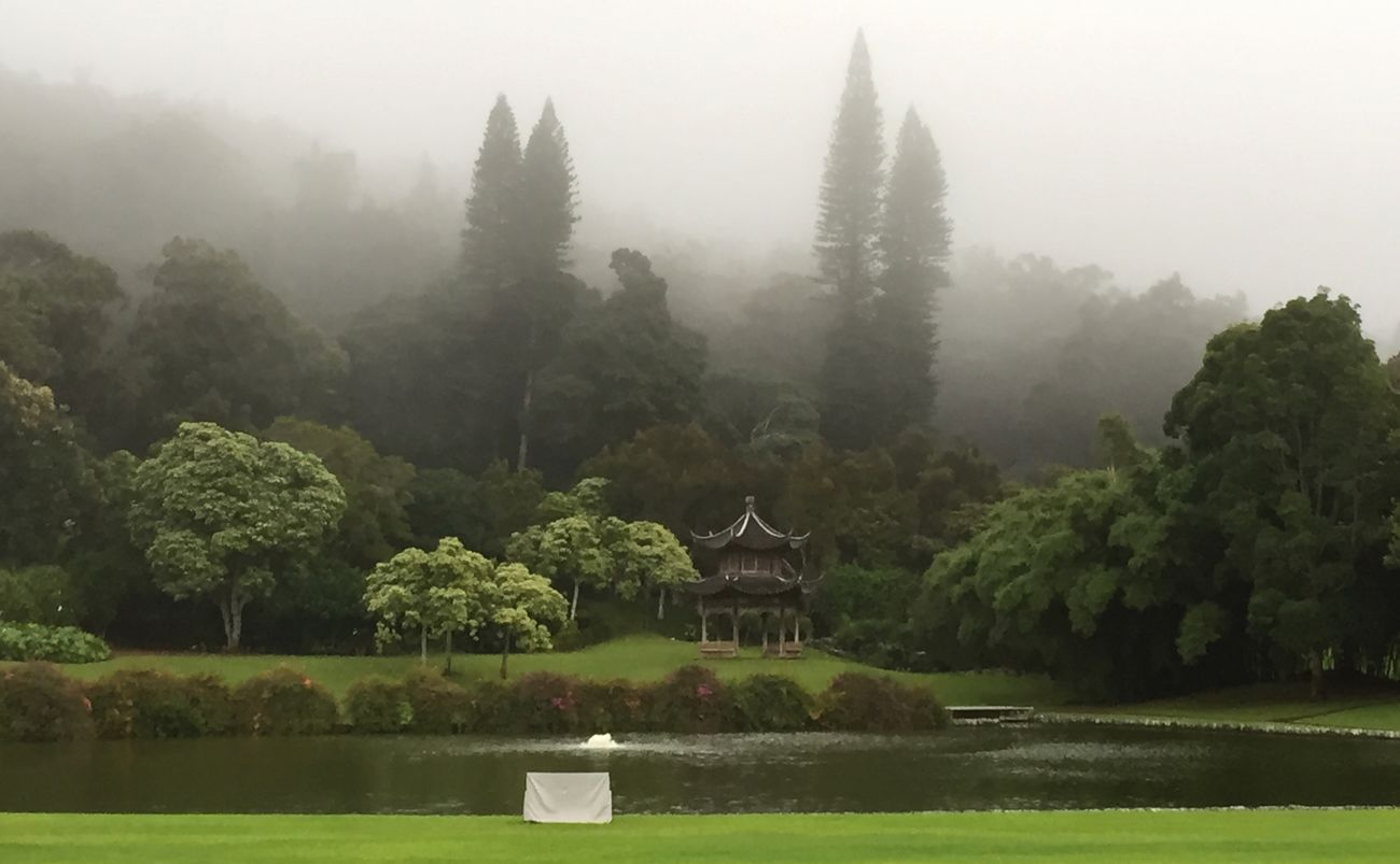 The EyeEm Facebook Cover Challenge afternoon Fog settling in over Pagoda in Garden