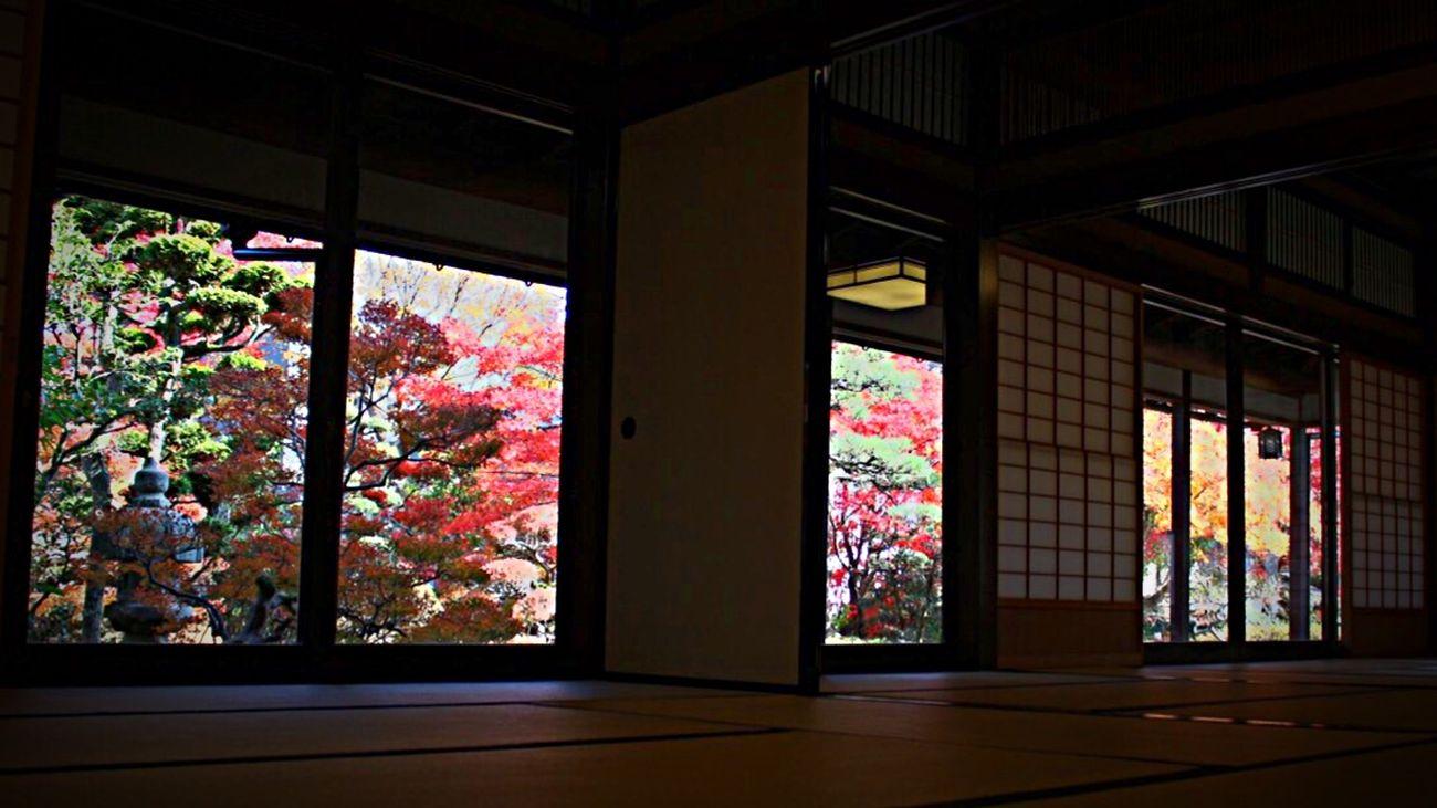 芭蕉の館 山中温泉 Basho in Yamanaka Onsen Japan Photography Landscape