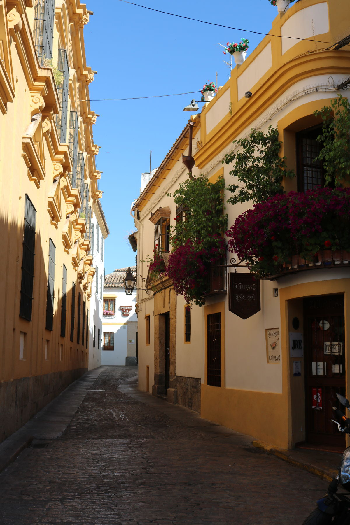 Pretty street in Cordoba, Spain Old Town Streets Architecture Building Exterior Built Structure City Clear Sky Day Flowers No People Outdoors Pretty Street Residential Building Sky Street The Way Forward Town Yellow