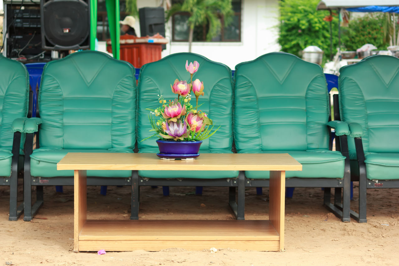 chair, green color, table, day, no people, flower, indoors