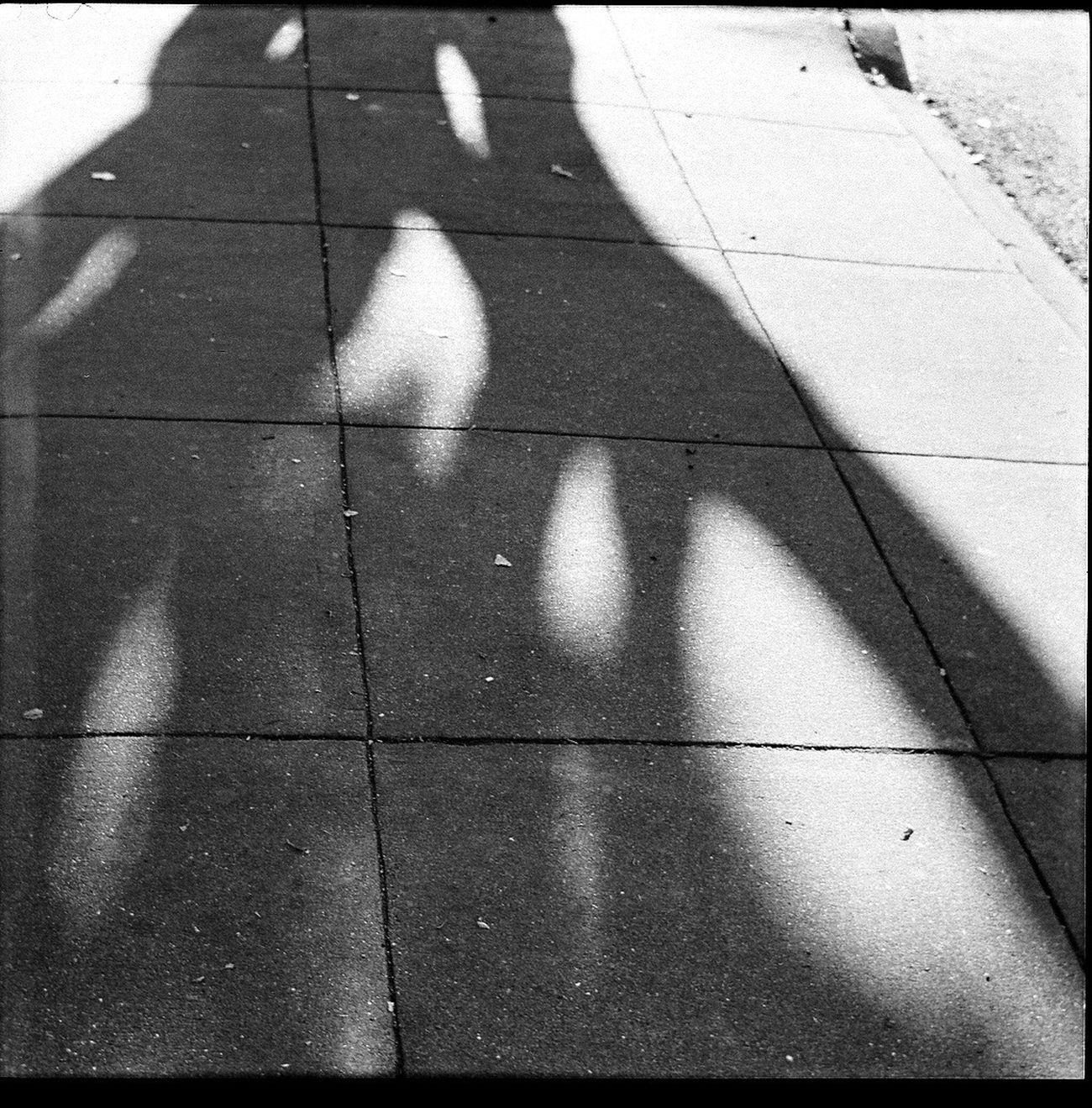Shadow Film Blk N Wht Square 6x6 Koduckgirl Belair Panorama