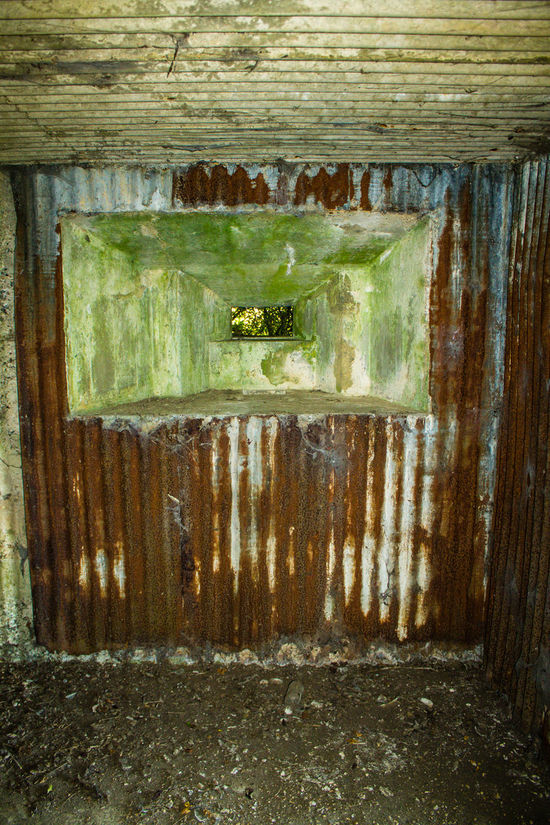 Day No People Outdoors Backgrounds Close-up Water WWII Military Structure PILLBOX Rural Scene Steel Abandoned Decaying Built Structure Architecture Indoors  Nature War Defense Shelter The Past Ww2