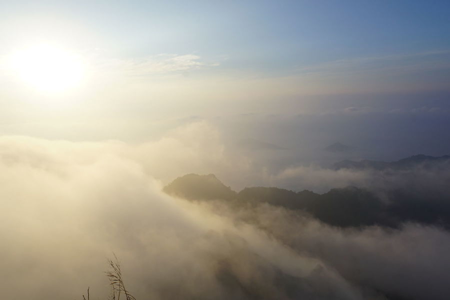 foggy morning on top of mountain Amazing Beauty In Nature Chiang Rai Cloud - Sky Day Doi Environment Foggy Foggy Morning Heaven Low Angle View Morning Nature No People On Top Of The World Outdoors Phu Scenics Sky Sunbeam Sunsrise Top Of The Mountains Tranquility Windy Winter