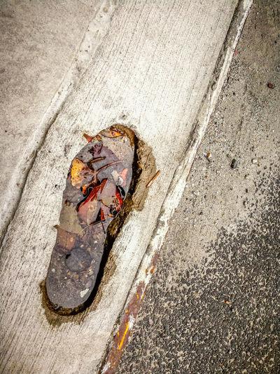 Abstrax Set v1.0... PS someone have had a bad shoe day lol Rahim NY NYC New York Abstrax First Eyeem Photo Beauty In Nature Vivid ❤ Inspirational Beautiful Love Calm Random Street Life FootPrint
