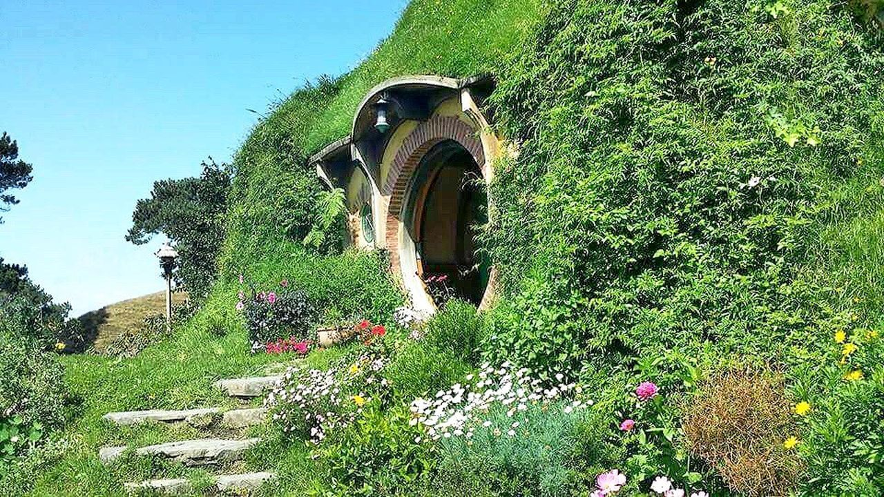 Plant Growth Outdoors Day Nature Solitude Countryside Tranquil Scene Green Color Scenics Remote Green Beauty In Nature Tranquility No People Mountain Non Urban Scene Lush Foliage Hobbiton Hobbithole Hobbiton Movie Set Tours