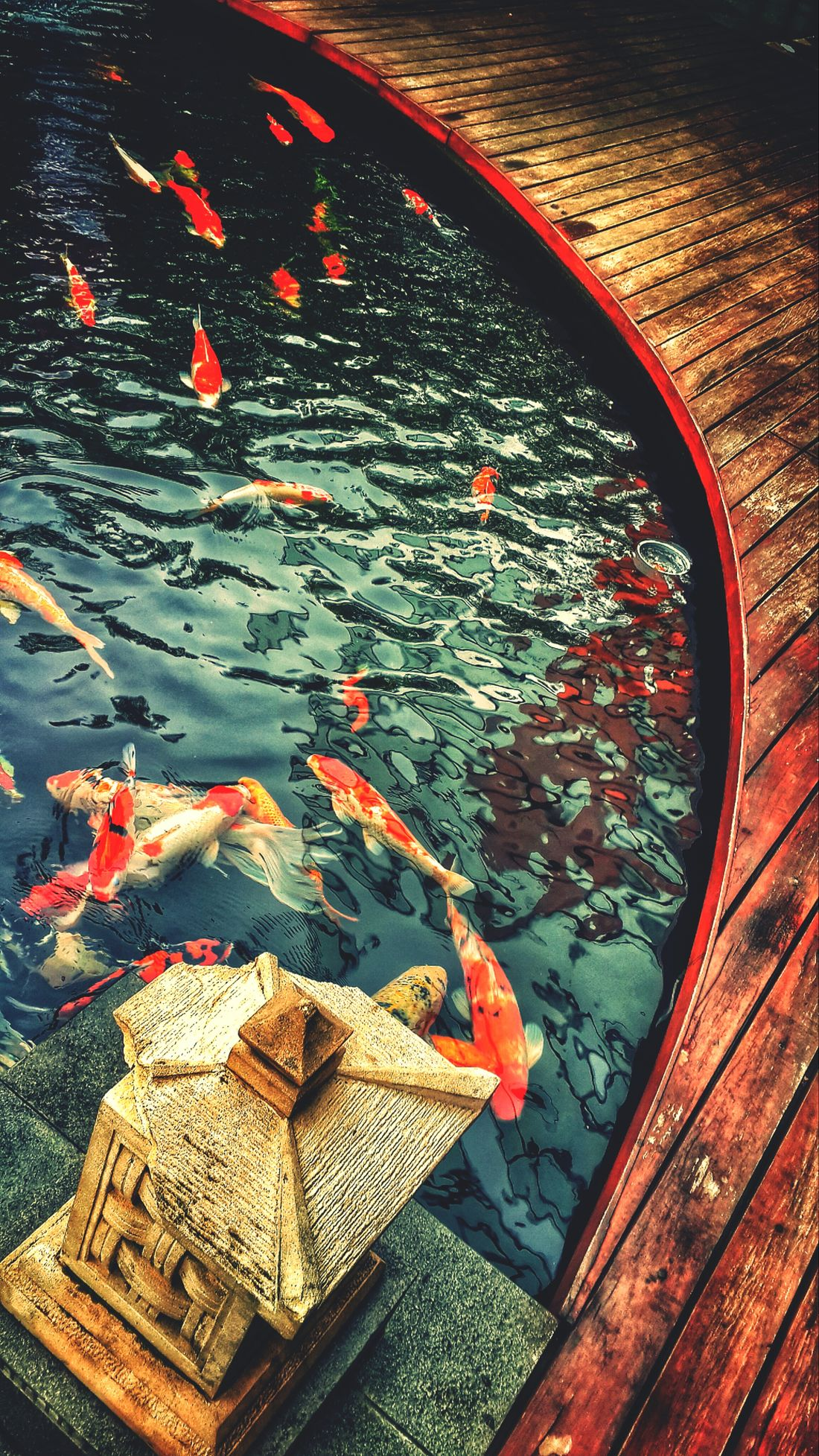 My Happy Place  Fish Ponds #ponds Tranquility Koi