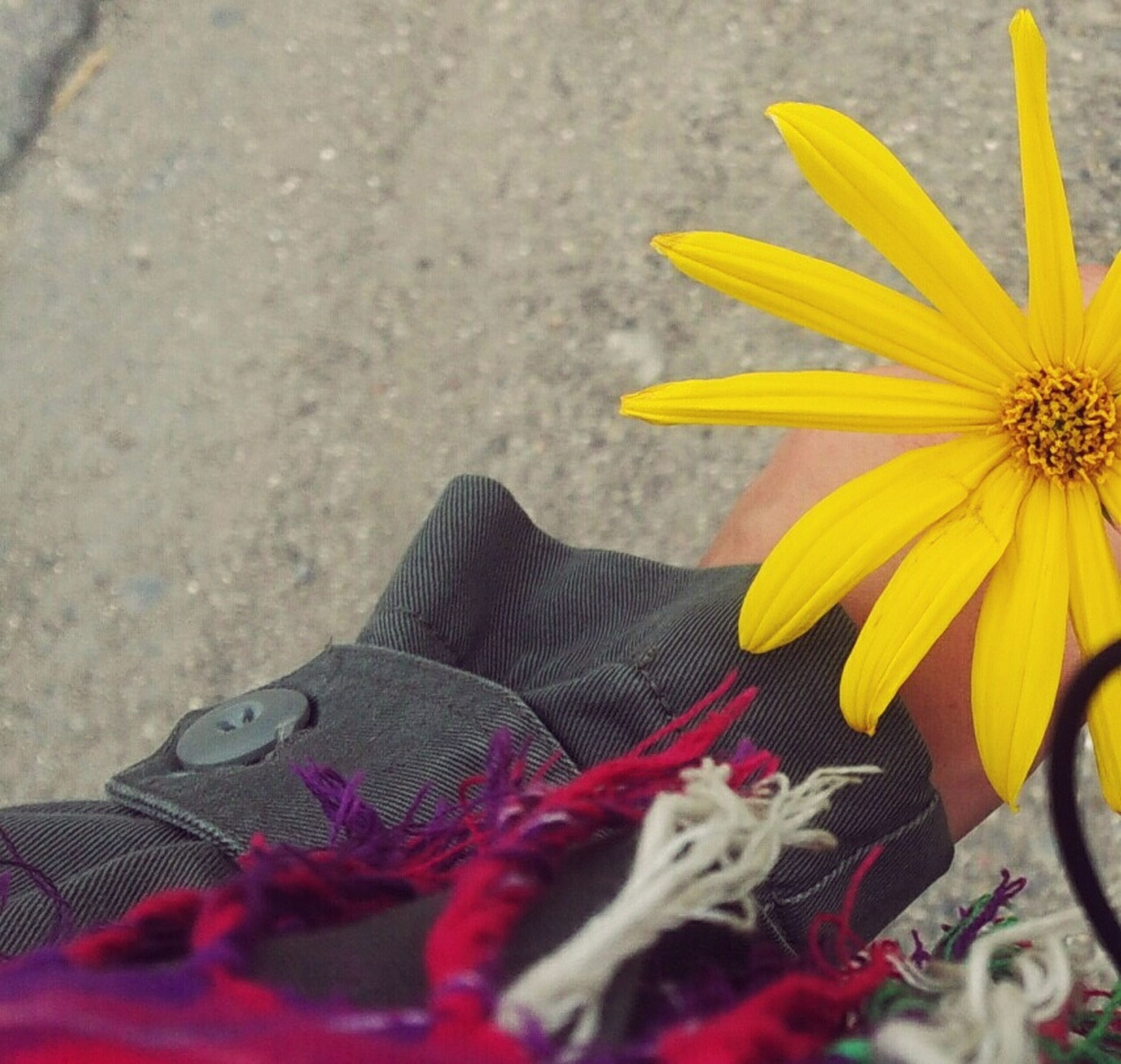yellow, low section, flower, petal, person, selective focus, close-up, fragility, flower head, shoe, freshness, vibrant color, personal perspective, red, footpath, fashionable
