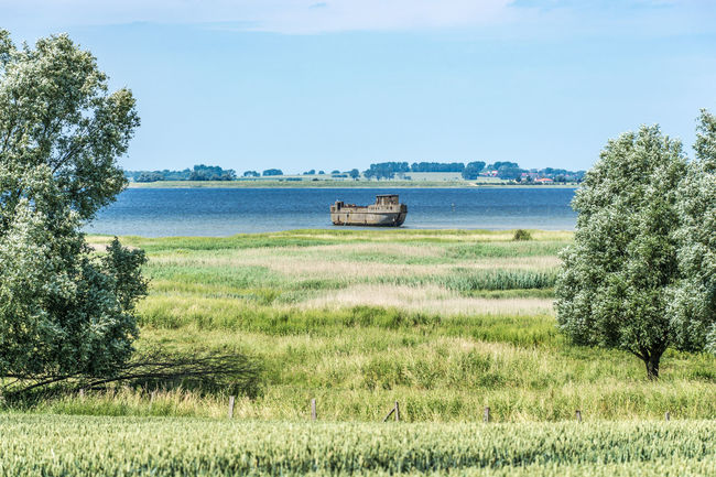 2016_06_Redentin_DE Baltic Sea Cement Grass Grassy Green Color Insel Poel Landscape Landscape_Collection Landscape_photography No People Poel Poel Island Redentin Ship Wreck Wismar Wreck