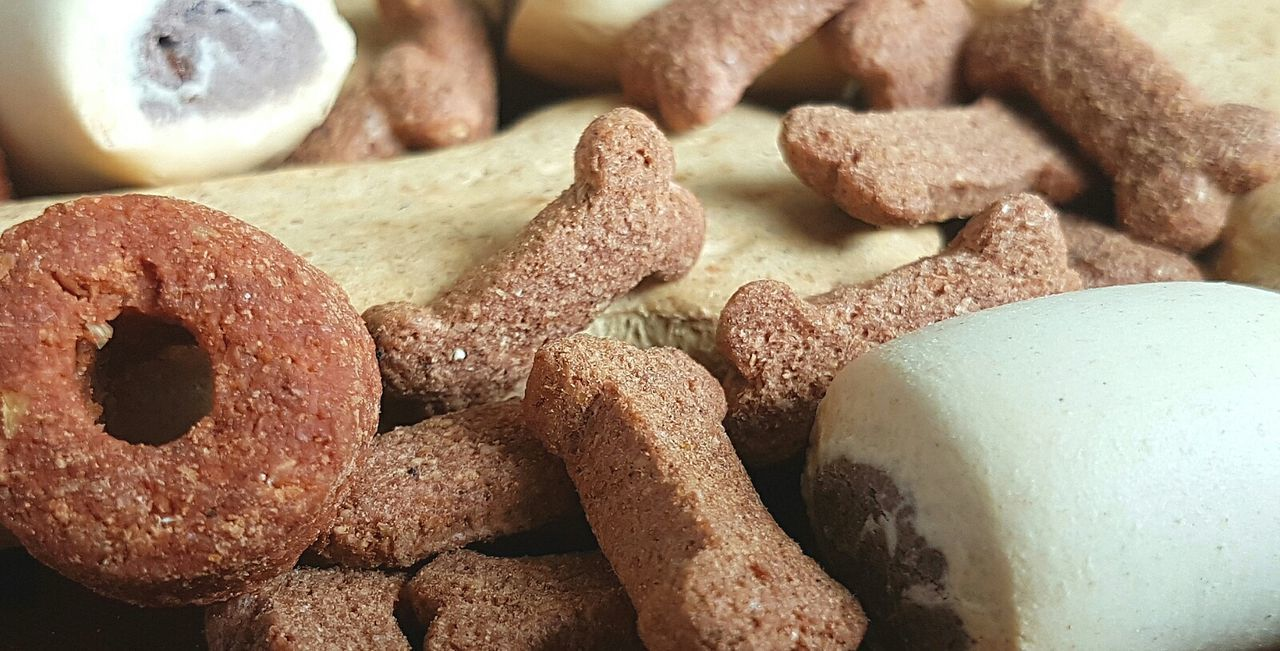 Dog biscuits Dog Biscuits Doggy Biscuits Pattern Animal Patterns Animal Pattern Biscuits Cookies Dog Cookies Doggy Cookies Pattern Pieces Pattern, Texture, Shape And Form Patterns Patterns & Textures Treats Animal Treats Dog Treats Doggy Doggy Treats