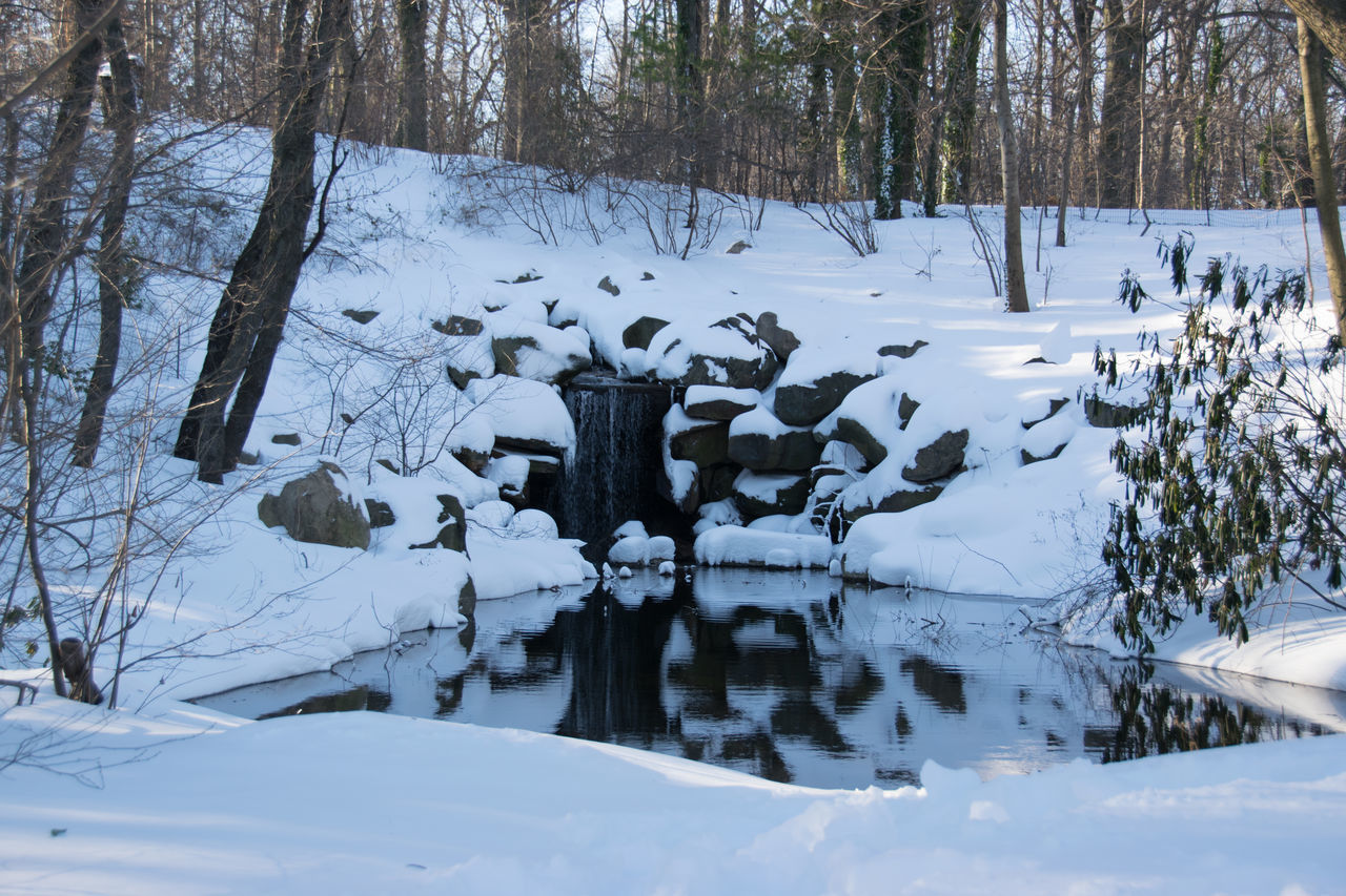 Nature Prospect Park Reflection Snow Trees Water Waterfall Winter Winter Landscape