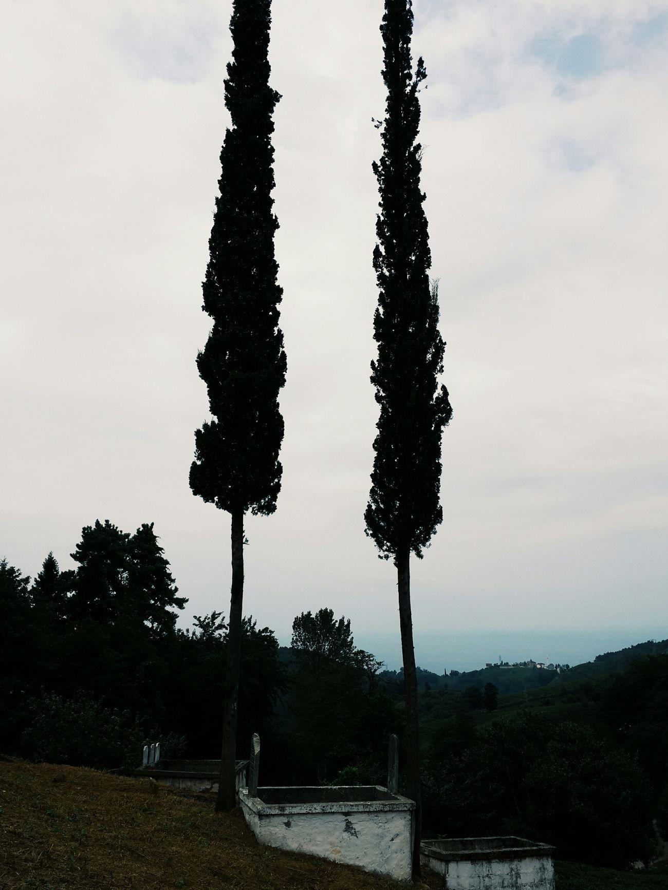 Nasıl göründüğünü çekme, ne hissettirdiğini çek! Trabzon Vscocam VSCO Note3 Taking Photo Died