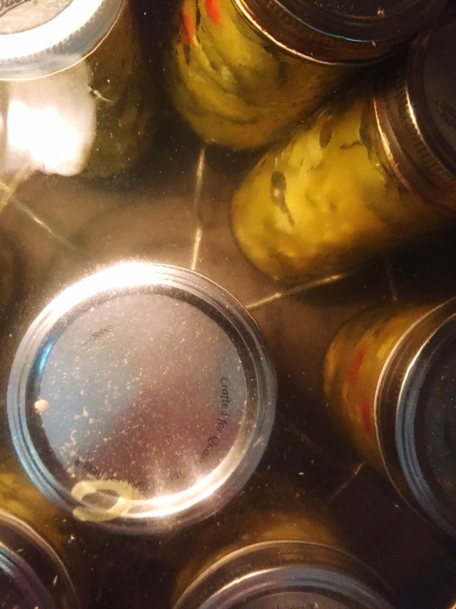 Canning pickles Food And Drink Close-up Freshness No People Overhead View Canning Jars Canning Pickles