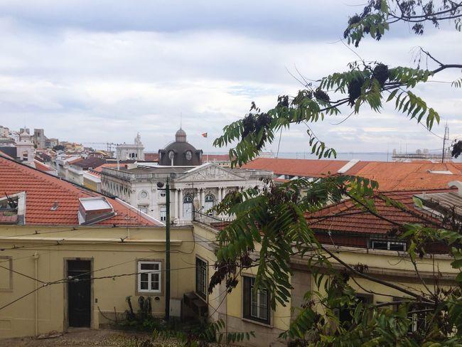 Aloha Lisboa.