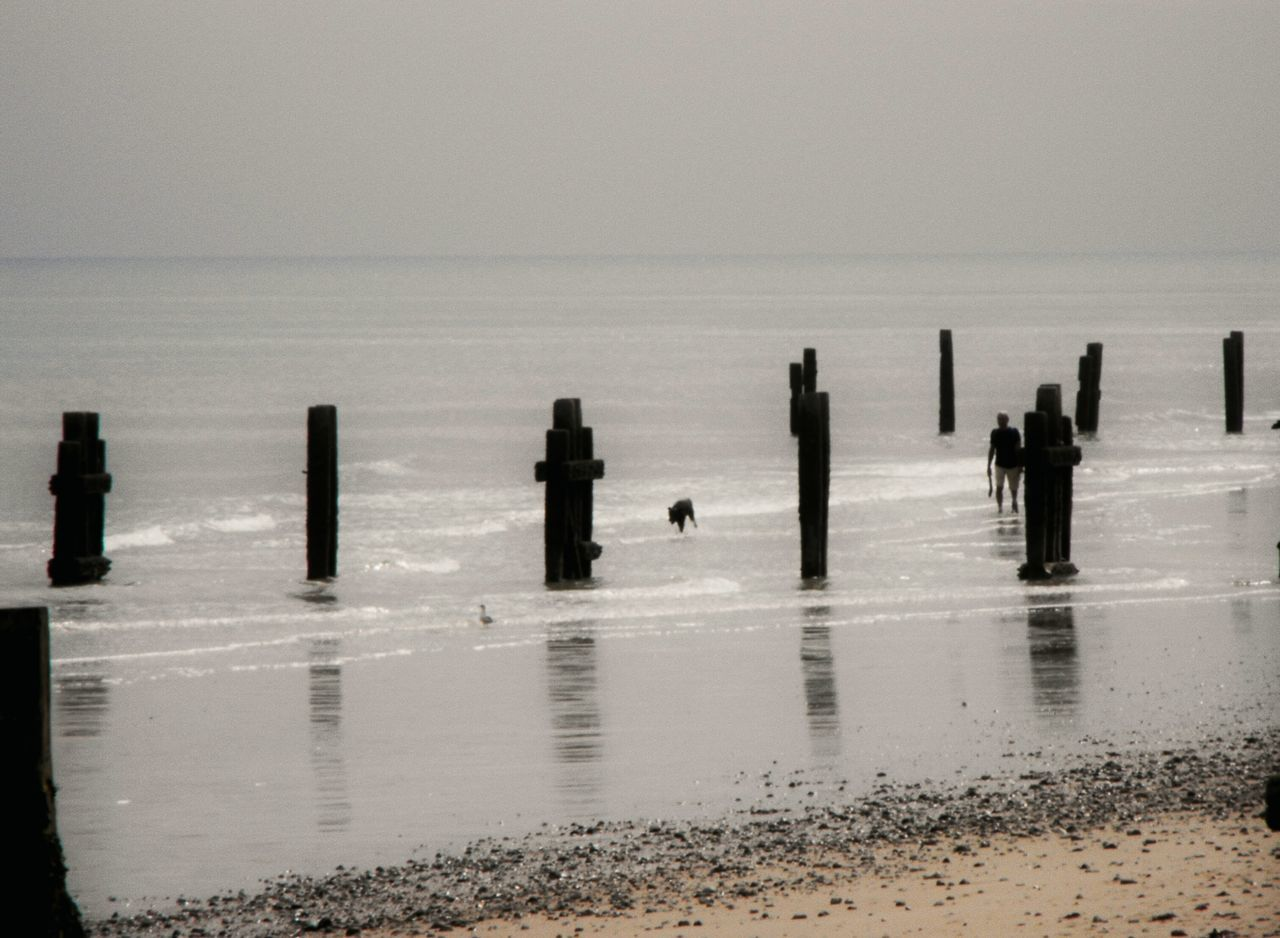 ... Waddling ... Sea Water Tranquility Tranquil Scene Silhouette Horizon Over Water Scenics Outdoors Beach Sky Day Norfolk Wood - Material Groyne Dog Person Soft Focus Blurry Sunshine Summer Seaside Dazzling Dazzle