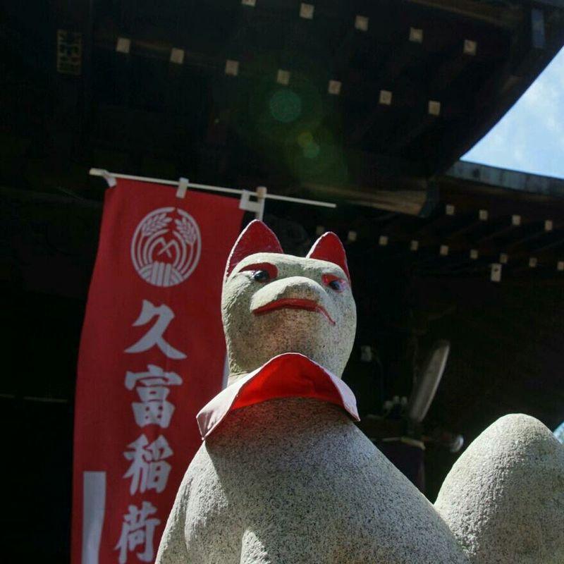 Charming Spiritual Foxes Inari-jinjya Shrine