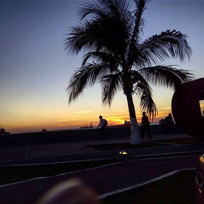 Landscapes Sunsets Sunrise_sunsets_aroundworld Sun Sunrise Sunriselovers Sunrise_and_sunsets CdDelCarmen Palm Nature Nature_perfection Insturkei Skysun Skylovers WORLD_BESTSKY Sea Mexico_maravilloso Instanature Earth_escape Super_photosunsets Sunset_madness Sunset_pics Sunset_ Sunset_vision Sunsets_oftheworld campechemexico visitacarmen