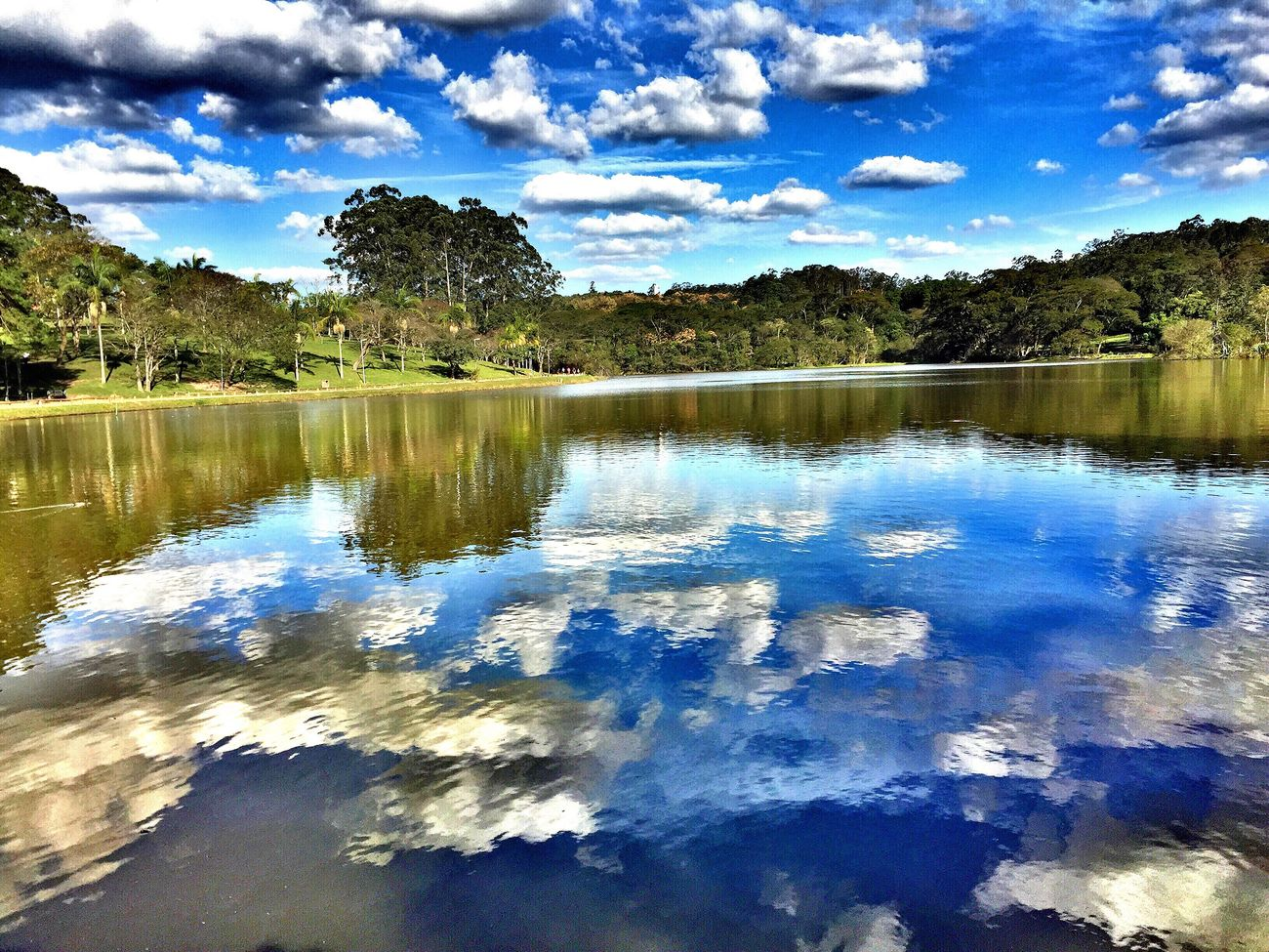 The Great Outdoors - 2017 EyeEm Awards Reflection Beauty In Nature Cloud - Sky Sky Outdoors Landscape Nature Park Parkscapes Parque Do Carmo Saopaulowalk Sao Paulo - Brazil