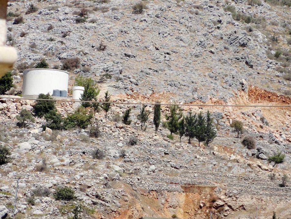 Kfarhouna Lebanon Watertank Nature No People Outdoors Plant Day Tree Close-up