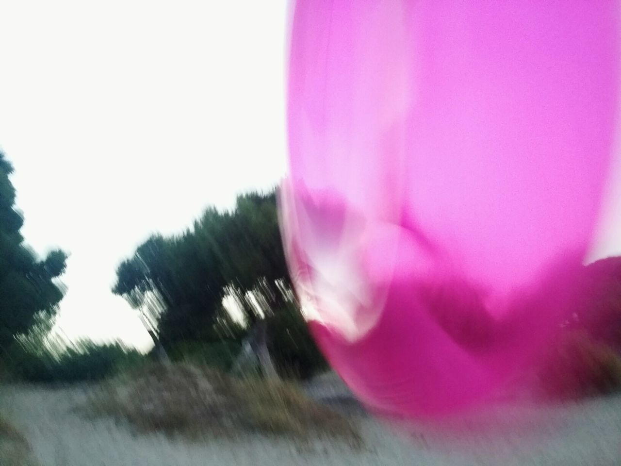 Playing like kids once again. Pink Color Nature Tree Outdoors Playing Sand Beach Beach Activities Activity Inflatable  Inflatable Ring Inflatables Ring No People Day Close-up Beauty In Nature Sky Summertime Summer Neon Life